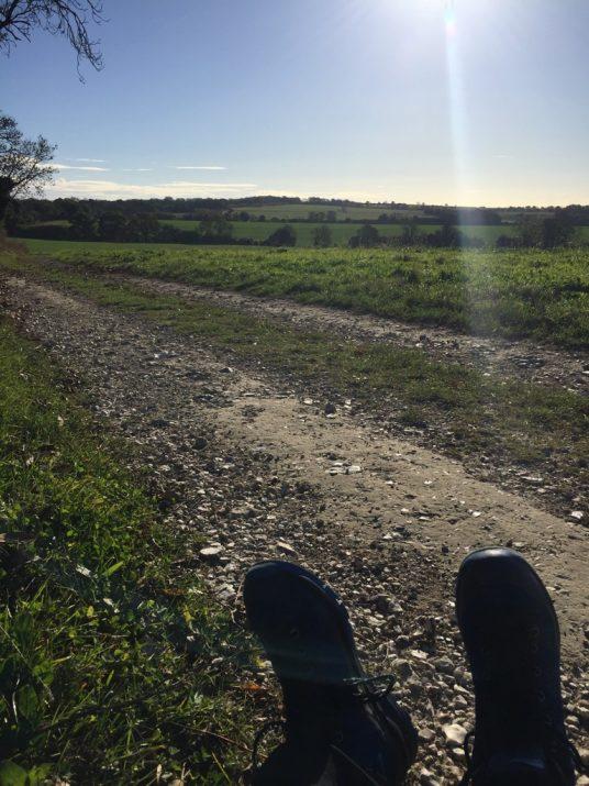 e70c321b3cd Lidl walking boots going well: Day 2 - Jill's Walking Blog