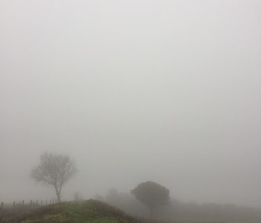 A foggy day on Butser Hill