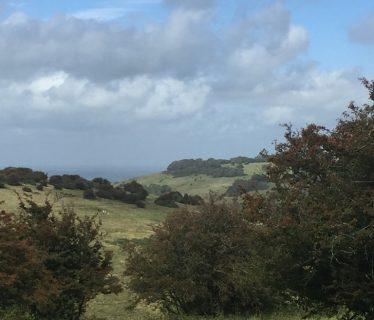 Views across Devils Dyke