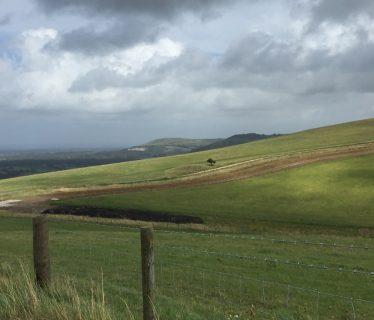 Edburton Hill and Fulking Escarpment
