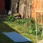 yoga mat in jills garden
